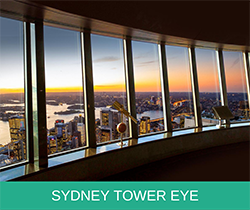 Tower Eye